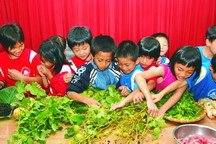 台東電光國小小朋友學習如何辨識野菜