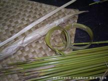 月桃編織材料 圖片提供:黃芳琪