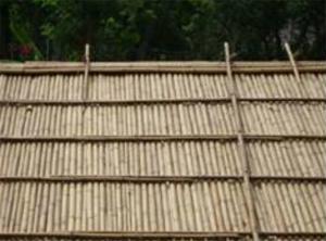 竹屋頂施作