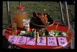 泰雅族食物展示