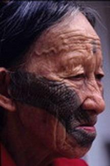 (圖1):泰雅族黥面婦女